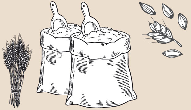 Drawing of sacks of flour from The Bagel Co Rose Bay